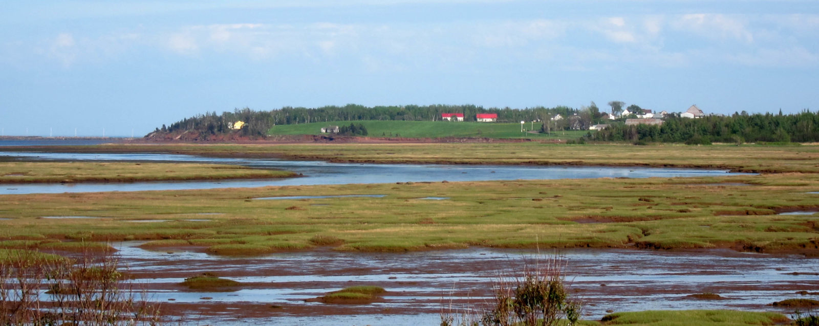 PEI seaside landscape