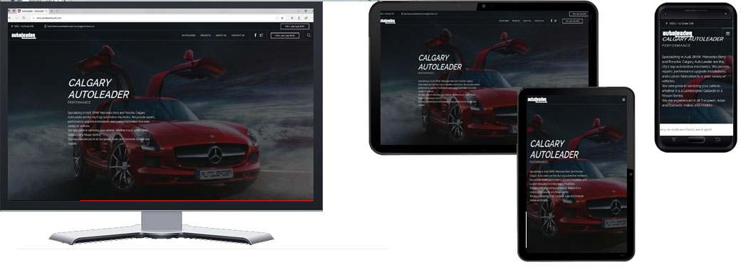 Auto Leader South Responsive Website In Portfolio